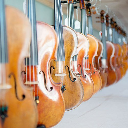 We carry a large selection of violins from which to choose