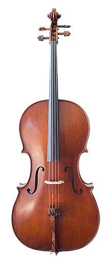 Photo of a Rental Cello