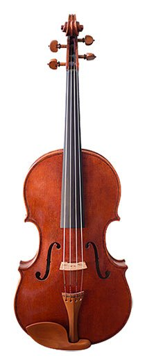 Photo of a Rental Viola