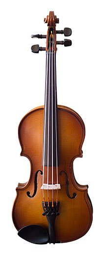 Photo of a Rental Violin