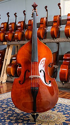Photo of the front of a Top Notch Rental Upright Bass