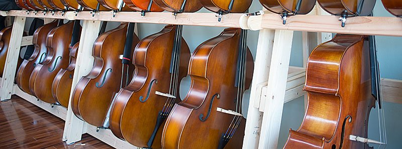 Photo of: some of Top Notch's Upright Bass selection