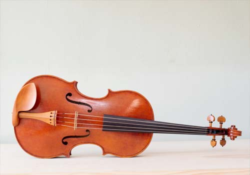 New violins, violas, cellos, and upright basses from Top Notch.
